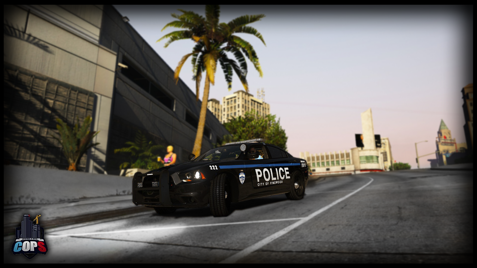 2014 Vinewood Charger