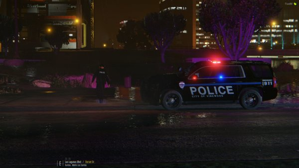 Vinewood PD Investigating