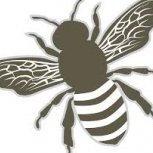 HoneyBee8709