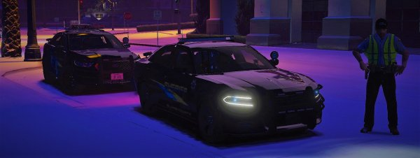 """""""TED providing help to the LSPD Units, We will help anywhere we can!"""""""