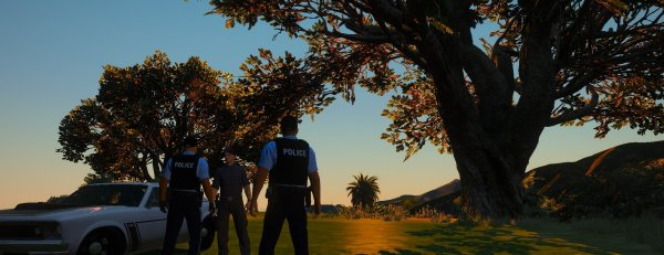 LSPD Park Services speaking with an Individual
