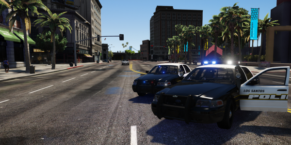 Los Santos Police Department - 2x CVPI (Bald and not)
