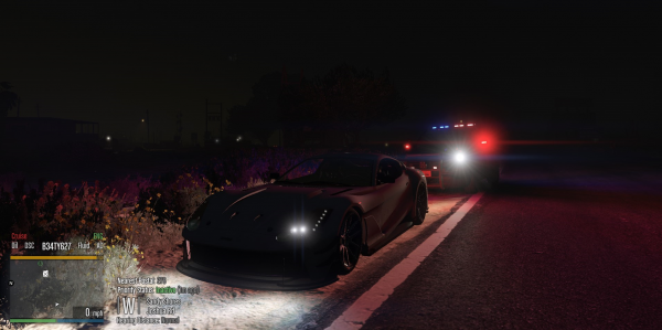 Pulled over.png