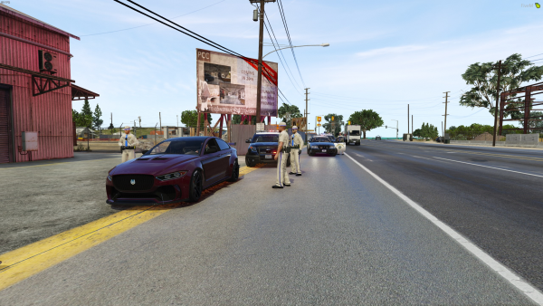 Pulled over in Paleto