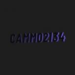 Cam02