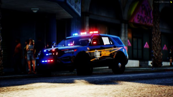 LCSO In Action.jpg