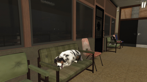 Dogs in the station